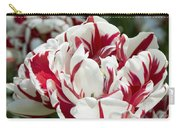 Red And White 6393 Carry-all Pouch