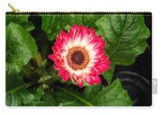 Red And White Gerber Daisy Carry-all Pouch