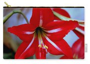 Red And White Lilly Carry-all Pouch by Debra Forand