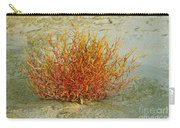 Red And Yellow Desert Color Carry-all Pouch