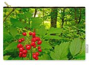 Red Baneberry Along Rivier Du Nord Trail In The Laurentians-qc Carry-all Pouch