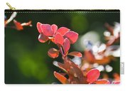 Red Barberry Carry-all Pouch
