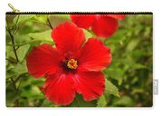 Red - Beautiful Hibiscus Flowers In Bloom On The Island Of Maui. Carry-all Pouch