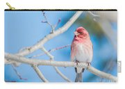 Red Bird Blue Sky Warm Sun Carry-all Pouch