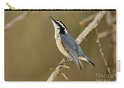 Red-breasted Nuthatch Pictures 76 Carry-all Pouch