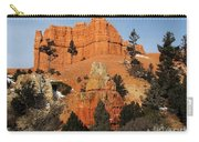 Red Canyon - Scenic Byway 12 Carry-all Pouch
