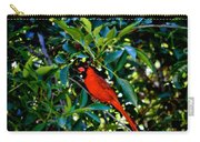 Red Cardinal 1 Carry-all Pouch