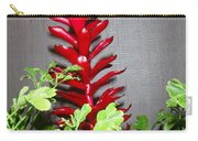 Red Cone Ginger - No 1 Carry-all Pouch