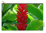 Red Cone Ginger Carry-all Pouch