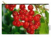 Red Currants Ribes Rubrum Carry-all Pouch