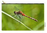 Red Darter Carry-all Pouch