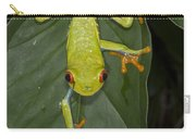 Red-eyed Tree Frog Costa Rica Carry-all Pouch