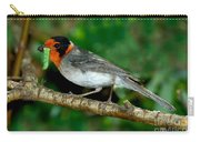 Red-faced Warbler With Caterpillar Carry-all Pouch