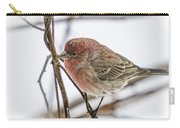 Red Finch Carry-all Pouch