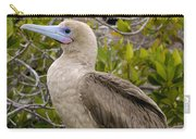 Red-footed Booby Galapagos Islands Carry-all Pouch