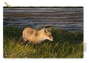Red Fox Hunting The Edges At Sunset Carry-all Pouch