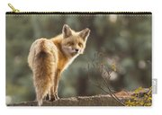 Red Fox In The Sunset Carry-all Pouch
