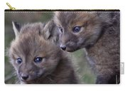 Red Fox Kits Carry-all Pouch