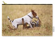Red Fox Playing With Jack Russell Carry-all Pouch