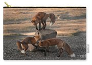 Red Foxes Vulpes Fulva Carry-all Pouch