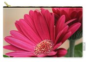 Red Gerber Daisies Carry-all Pouch