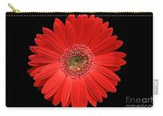 Red Gerber Daisy #2 Carry-all Pouch