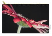 Red Gerbera 4 Carry-all Pouch
