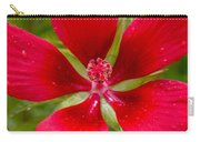 Red Hibiscus Carry-all Pouch