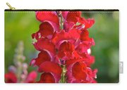 Red Snapdragon Carry-all Pouch
