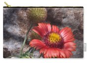 Red Indian Blanket Carry-all Pouch