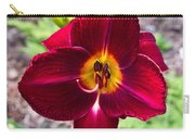 Red Lady Lily 2 Carry-all Pouch