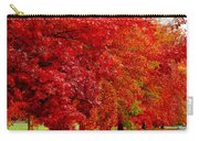 Red Leaf Road Carry-all Pouch