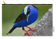 Red-legged Honeycreeper.. Carry-all Pouch