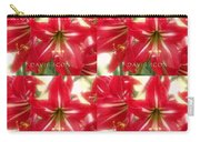 Red Lily Four Carry-all Pouch