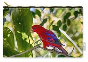 Red Lory Carry-all Pouch