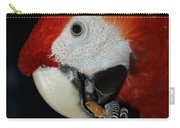 Red Macaw Carry-all Pouch