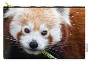 Red Panda  Ailurus Fulgens Eating Carry-all Pouch