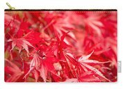 Red Red Red Carry-all Pouch by Anne Gilbert