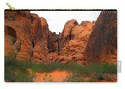 Red Rock Canyon. Carry-all Pouch
