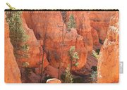 Red Rocks - Bryce Canyon Carry-all Pouch