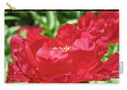 Red Rufflez Carry-all Pouch
