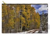 Red Sandstone Road In October Carry-all Pouch