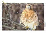 Red-shouldered Hawk Front View Square Carry-all Pouch