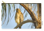Red-shouldered Hawk On The Palm Tree Carry-all Pouch