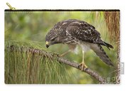 Red Shouldered Hawk Photo Carry-all Pouch