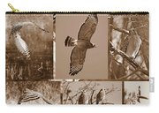 Red-shouldered Hawk Poster - Sepia Carry-all Pouch by Carol Groenen