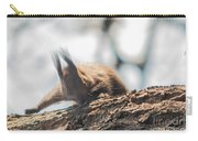 Red Sqirrel Carry-all Pouch
