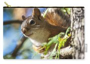 Red Squirrel In The Sun Carry-all Pouch