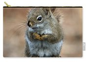 Red Squirrel On Patio Chair II Carry-all Pouch