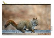 Red Squirrel On Patio Chair Carry-all Pouch
